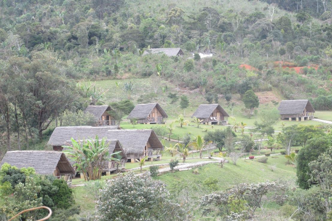Site Eulophiella, une forêt naturelle et un hôtel lodge 100% malagasy àAndasibe
